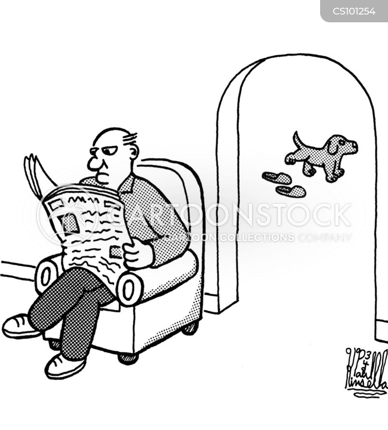 fetching slippers cartoon