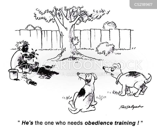 pet training cartoon