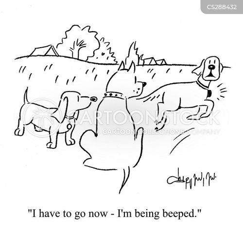 paged cartoon