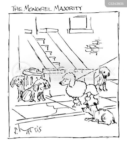 mongrels cartoon