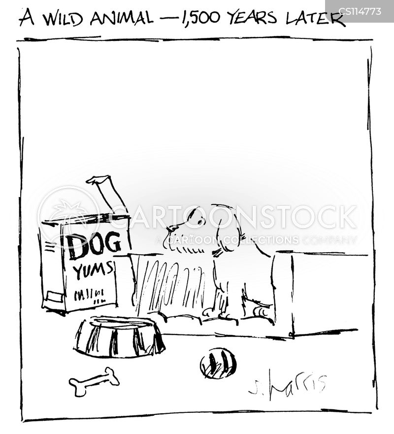 wild dog cartoon