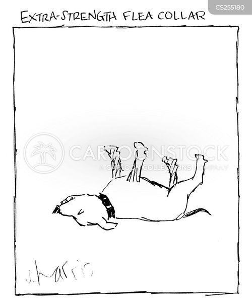 flea collar cartoon