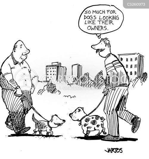 dog-walkers cartoon