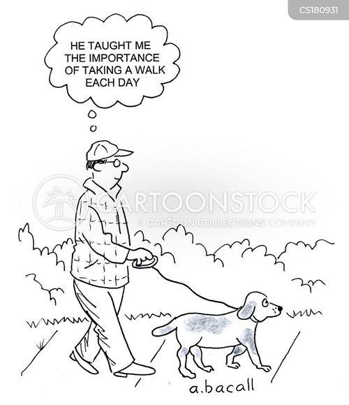 companionship cartoon