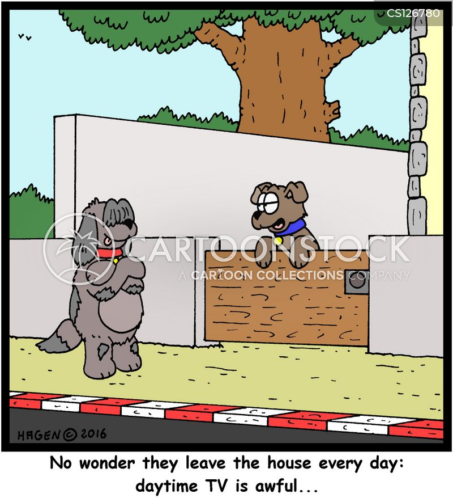 daytime tv cartoon