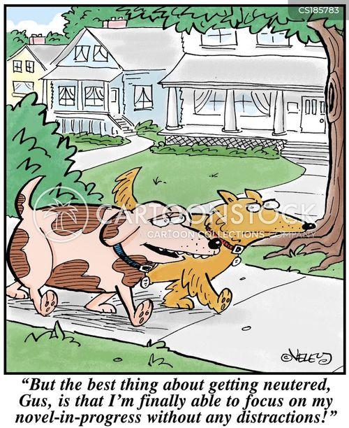 aspiring author cartoon