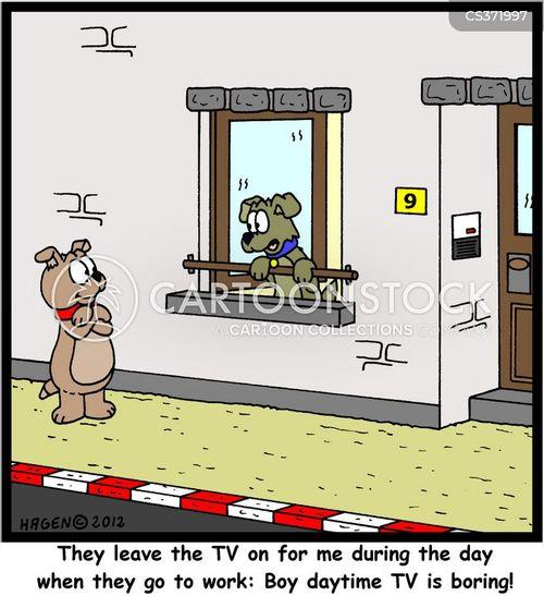 daytime cartoon