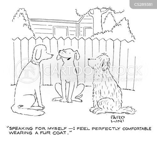 comfy cartoon