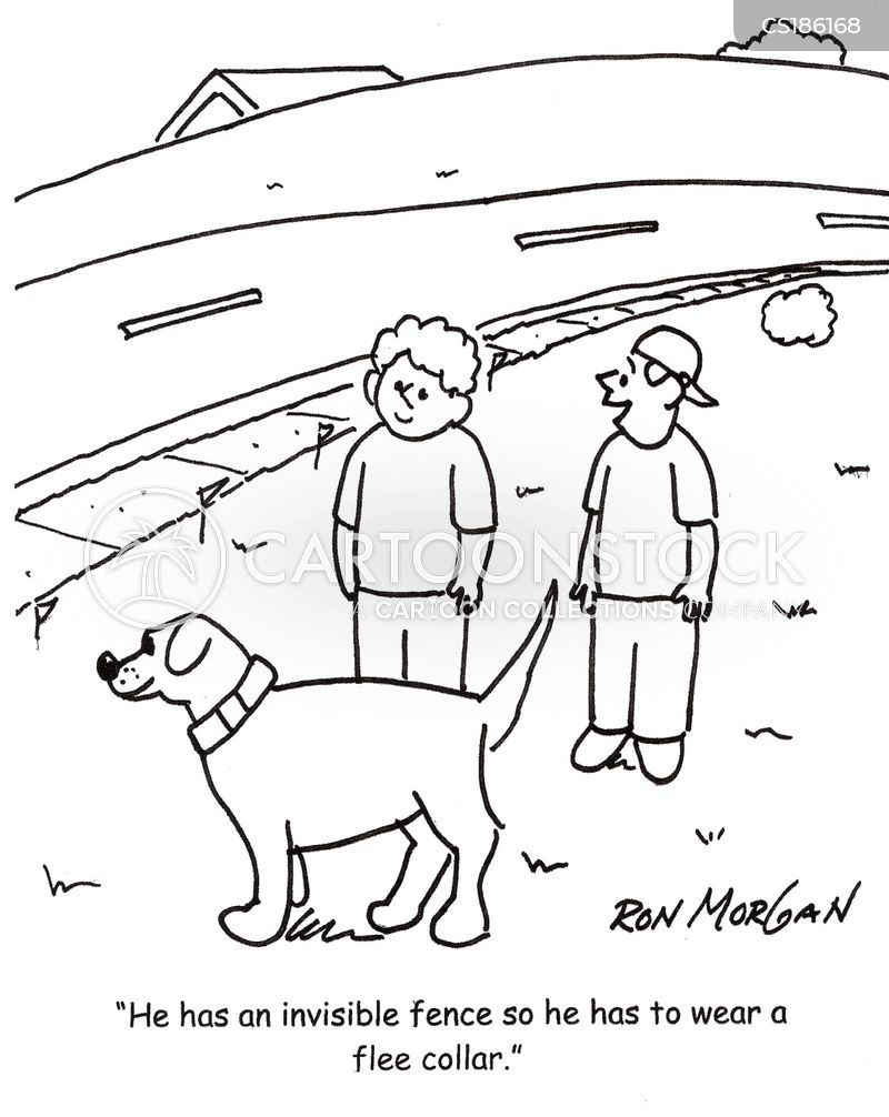 invisible fences cartoon 3 of 17