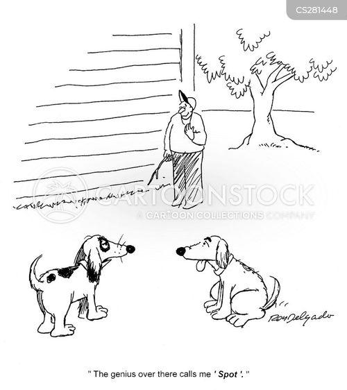 distinguishing features cartoon