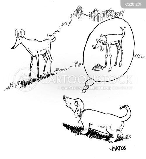 short legs cartoon