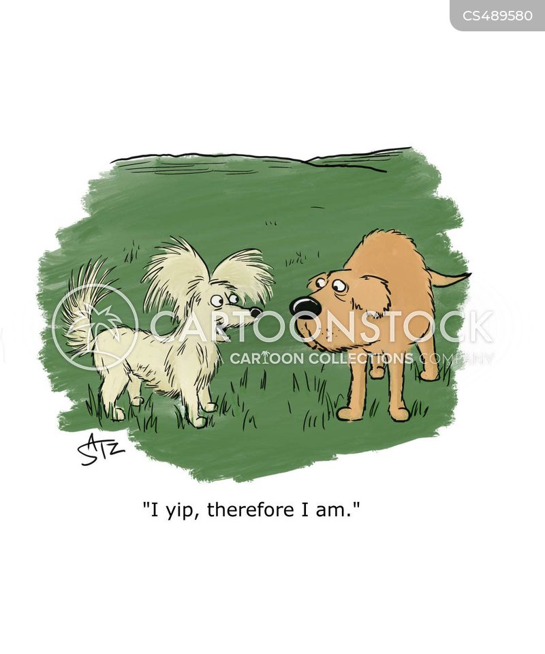 affirmation cartoon