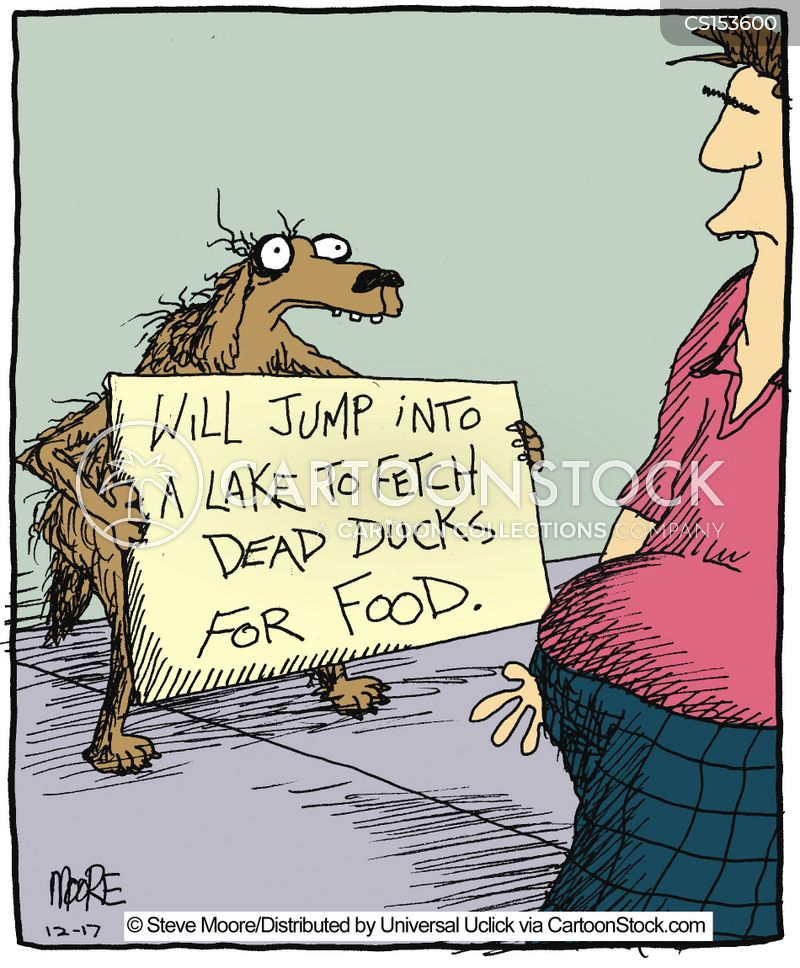 Dead Animal Cartoons and Comics - funny pictures from ...