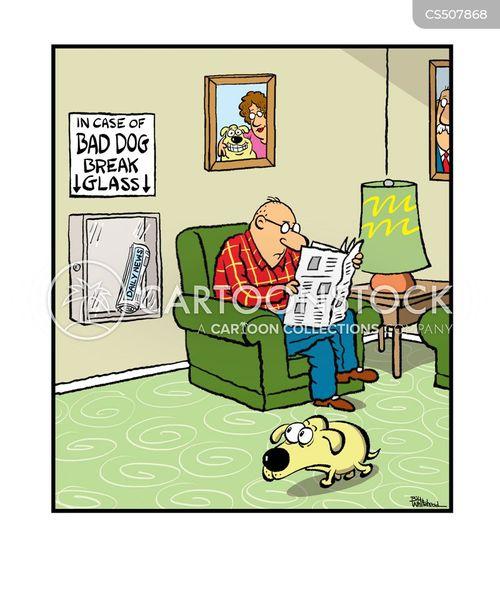 household pets cartoon