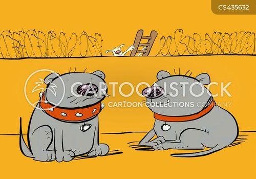 barbed wire cartoon