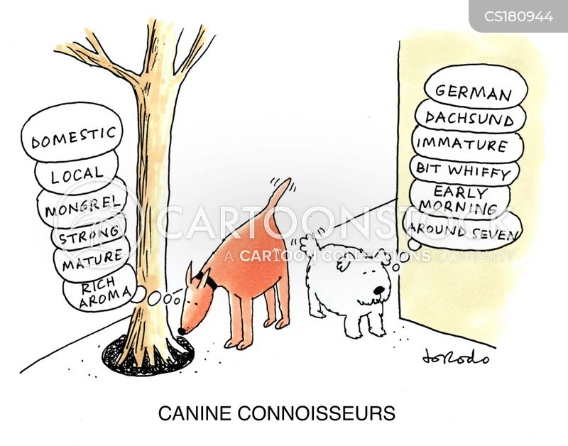 connoisseurs cartoon
