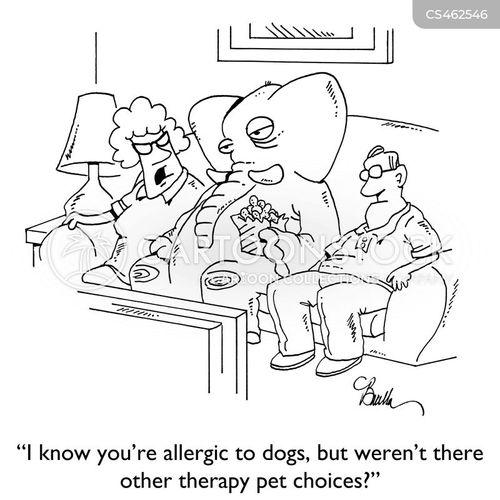 dog allergies cartoon