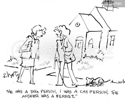 ferrets cartoon
