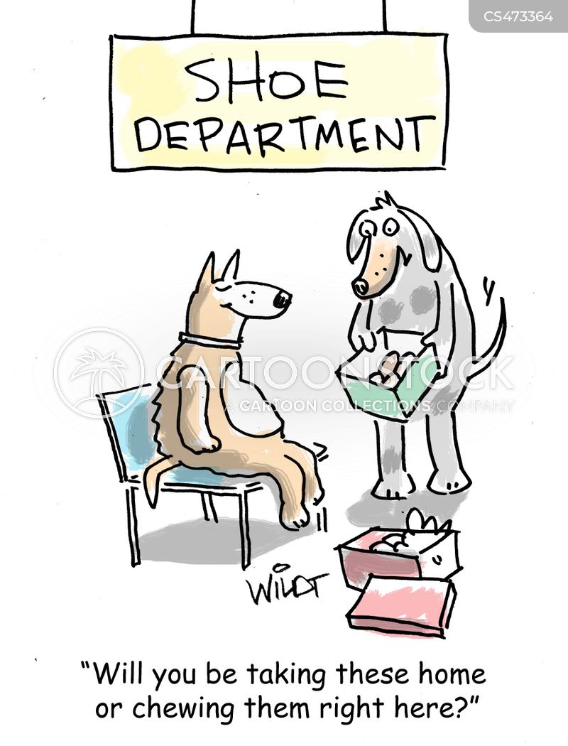 dog shoes cartoon