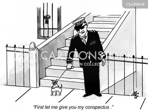 overview cartoon