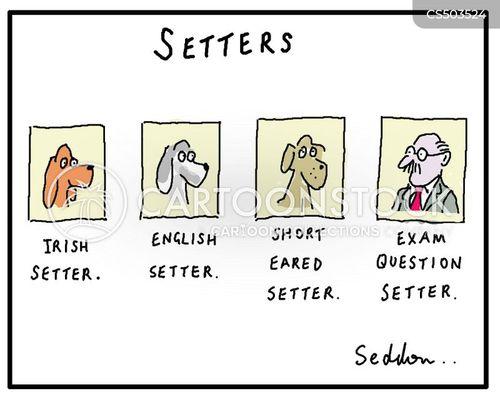 exam questions cartoon