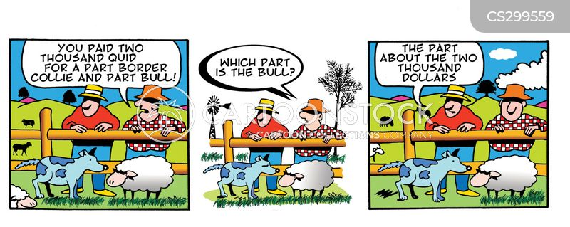 dog sales cartoon