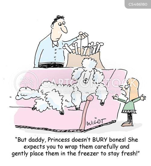 pampered poodle cartoon