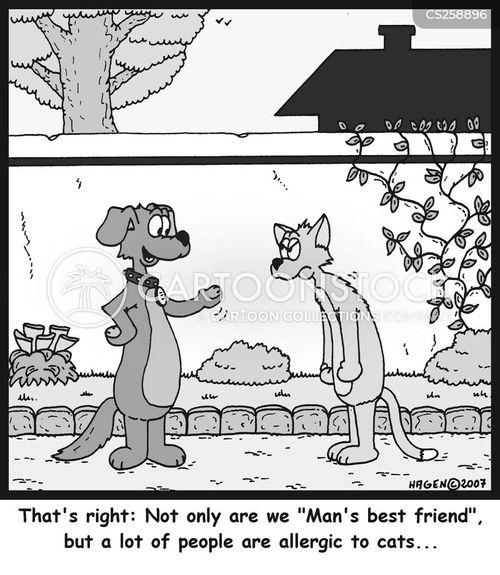provoke cartoon