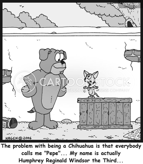 dogs names cartoon