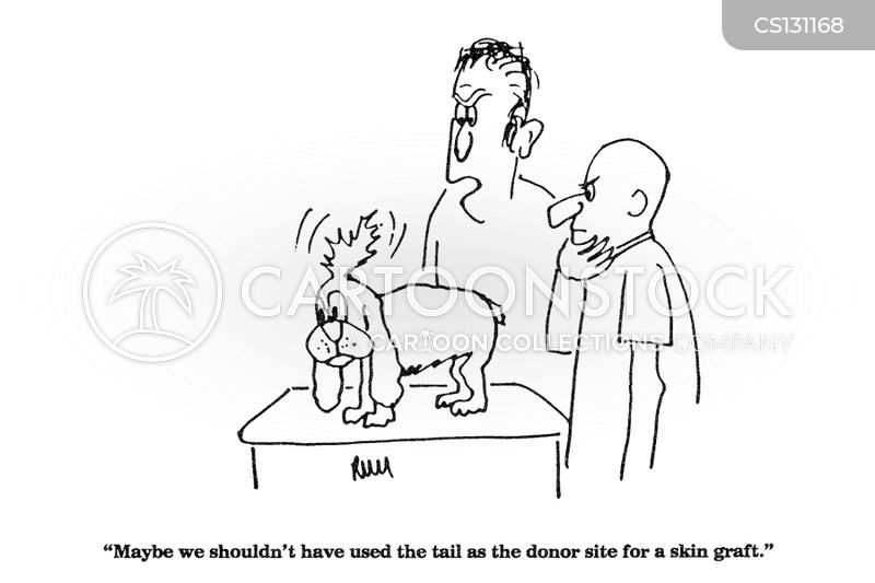 Skin Graft Cartoons And Comics Funny Pictures From
