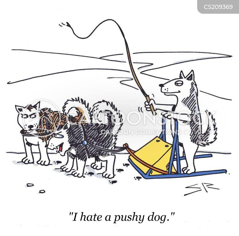 pushy cartoon
