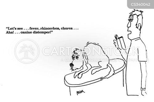 veterinary practices cartoon