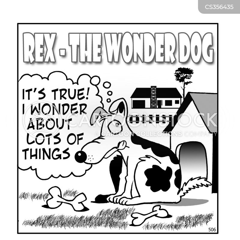 wonderdog cartoon