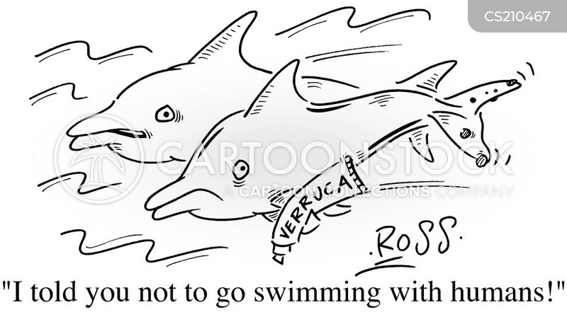 sea mammals cartoon