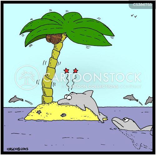 palmtree cartoon