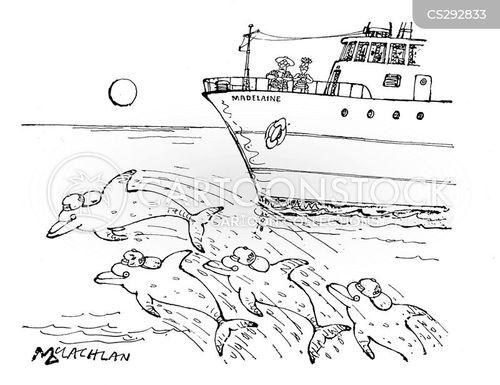 scally cartoon