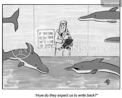 porpoises cartoon