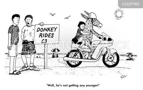 donkey rides cartoon