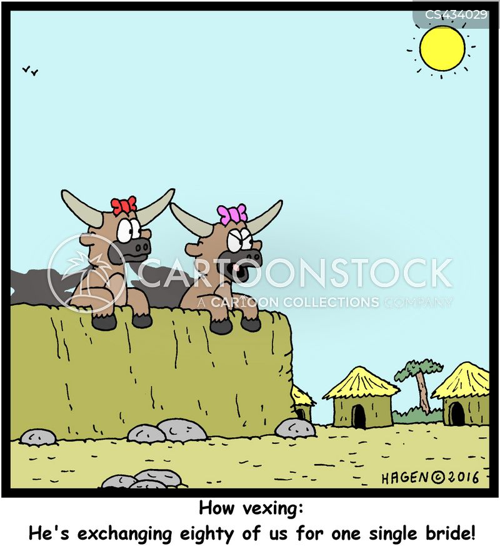 dowries cartoon