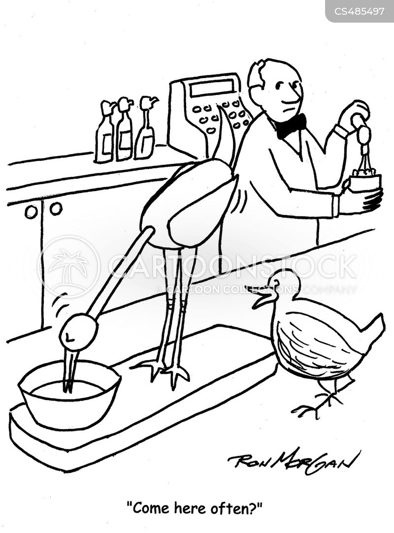 dipping birds cartoon