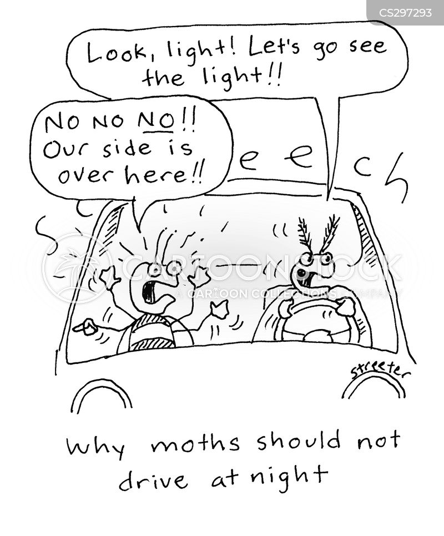 night driving cartoon