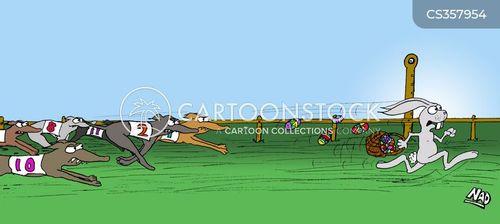 greyhounds cartoon