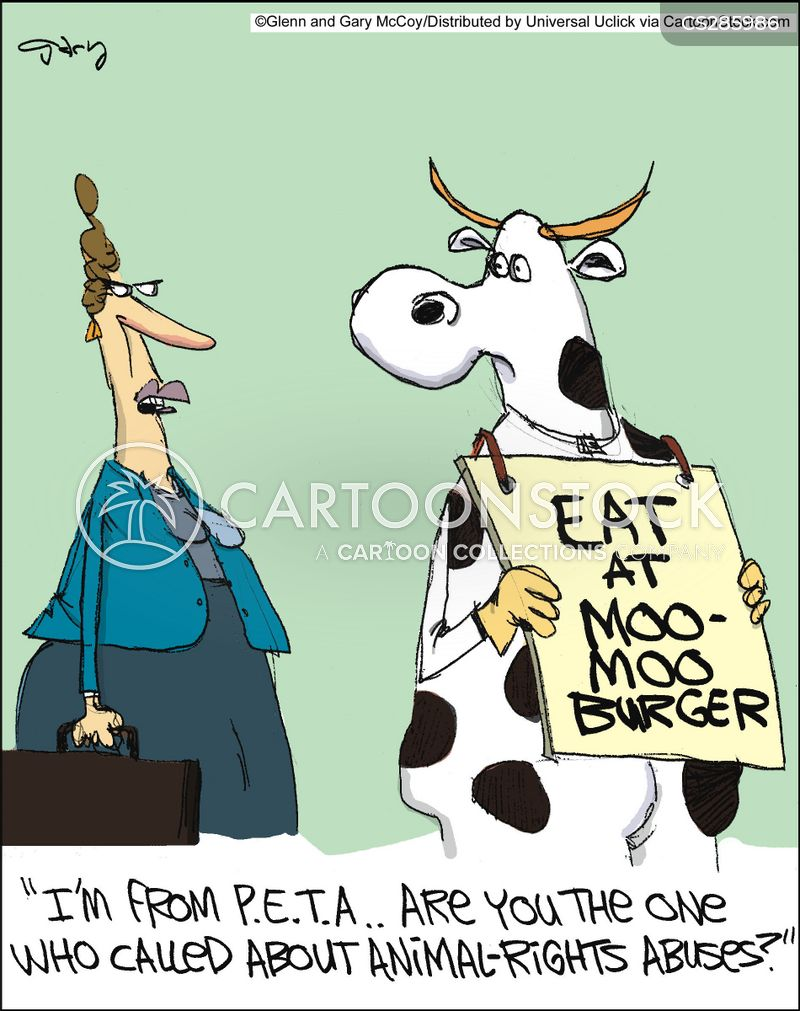 oxen cartoon