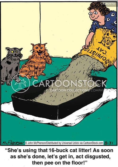 cat litters cartoon
