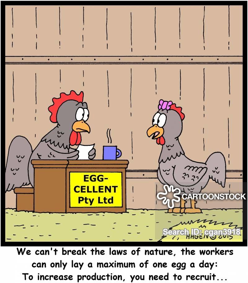 henhouses cartoon