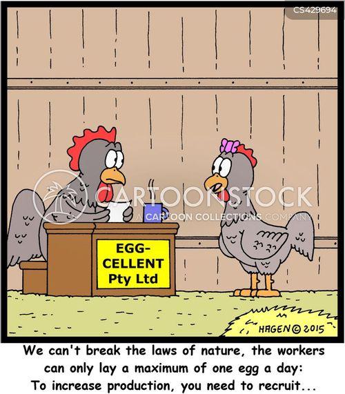 hen-house cartoon