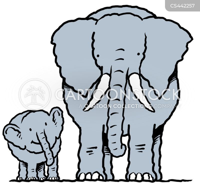 Baby Elephant Cartoons and Comics - funny pictures from CartoonStock