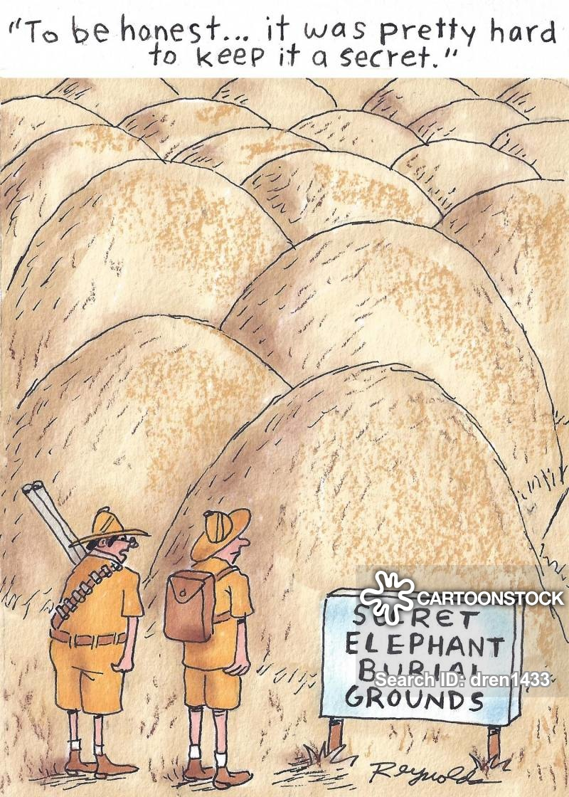 poachers cartoon