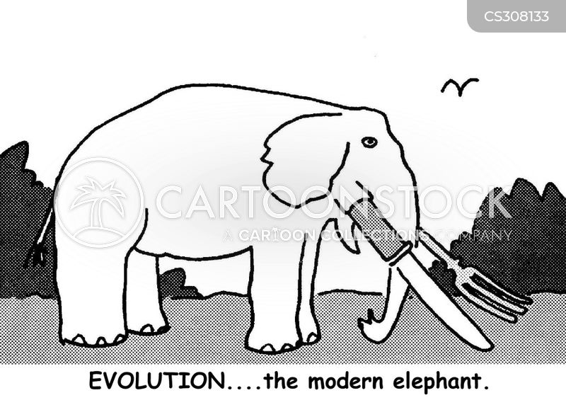 elephant keepers cartoon