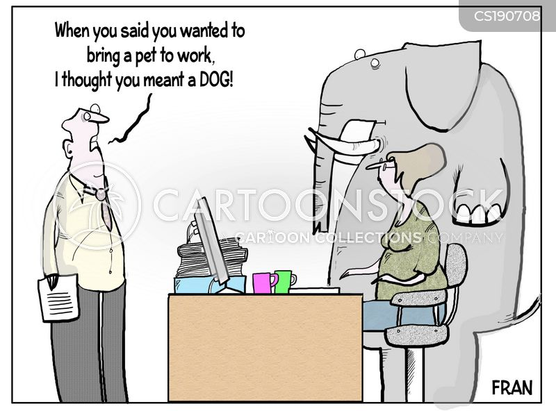exotic pets cartoon